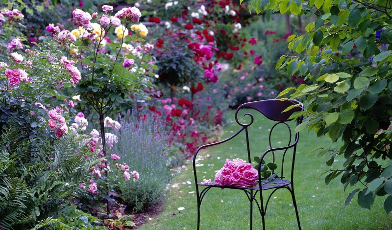 Ever-blooming flower gardens for a beautiful year!