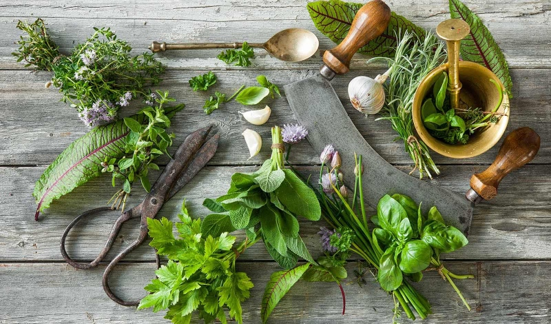 Your own herb garden for amazingly aromatic and useful herbs